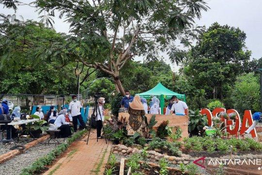 Sudin KPKP Jaksel perkenalkan konsep pertanian permakultur
