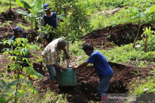 Santri di Temanggung lakukan gerakan menanam pohon