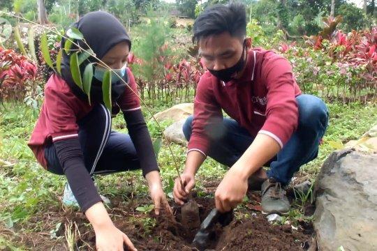 Mitigasi bencana, tanam 2.500 pohon di lereng Argopuro Jember