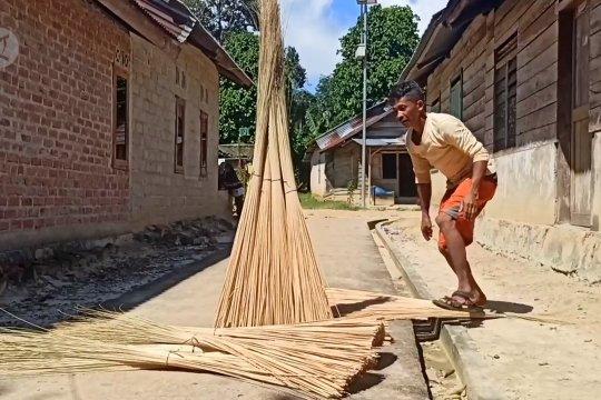 Lidi Nipah jadi pendapatan nelayan Desa Kota Kapur Pulau Bangka