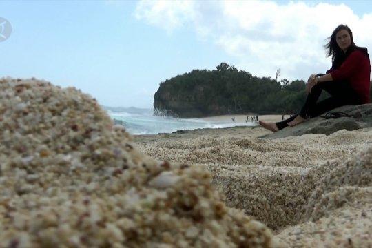 Pesona pantai Ngudel di Malang Selatan