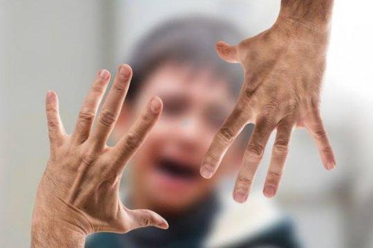 Komnas PA catat 26 kasus terjadi di Bandarlampung sepanjang 2020