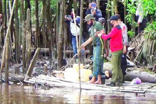 BKSDA Kalteng: Buang sampah di sungai picu buaya sasar permukiman