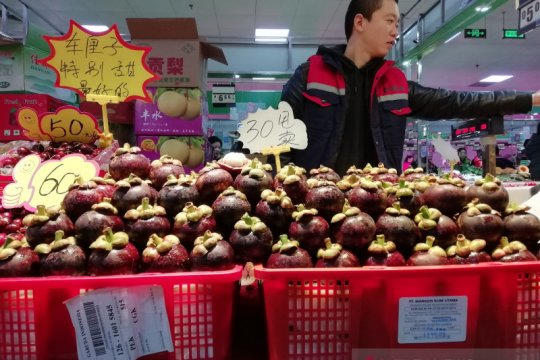 Defisit perdagangan Indonesia dengan China turun 66 persen