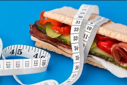 Mengenal diet GM, klaim turunkan hingga 6,8kg dalam tujuh hari