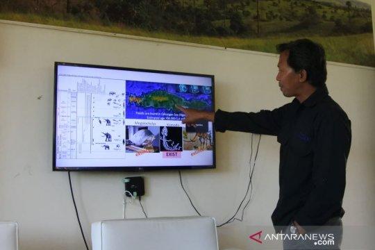 Progres penataan di Loh Buaya, Pulau Rinca capai 64,01 persen