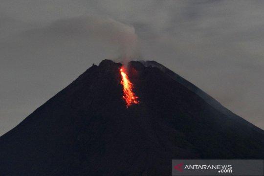 BPPTKG: Gunung Merapi empat kali keluarkan awan panas guguran
