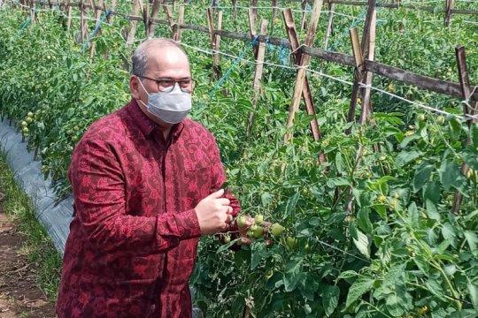 BI Banten optimistis vaksinasi jadi pendorong pertumbuhan ekonomi