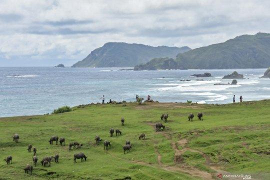 Mengenal lima destinasi wisata super prioritas