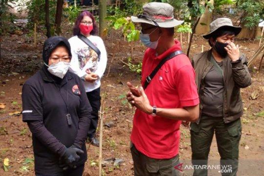 Risma: Bantaran Sungai Ciliwung patut dijaga