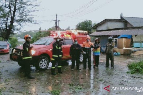 Cuaca buruk, sejumlah pohon di Batam tumbang