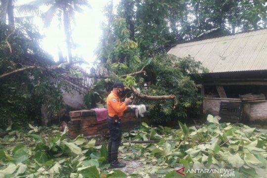 Belasan rumah dan lapak pasar di Jember rusak akibat puting beliung