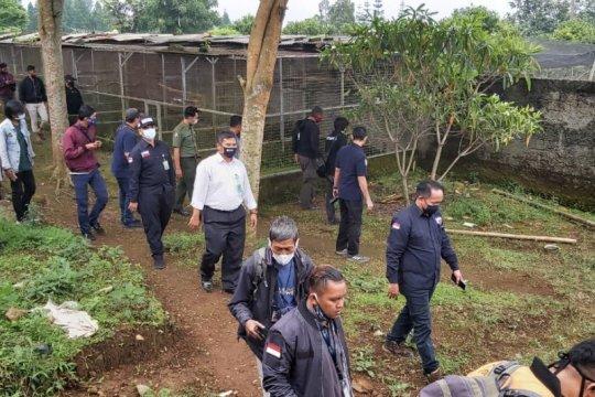 Polri sita 184 satwa dilindungi dari penangkaran di Cicurug Sukabumi
