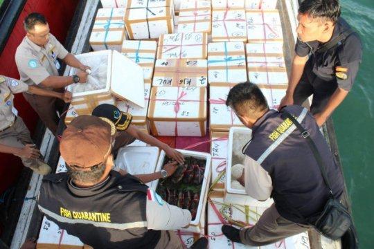 KKP dorong Unit Pengolah Ikan tingkatkan jumlah negara sasaran ekspor