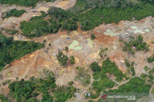Kerusakan lingkungan akibat tambang emas ilegal