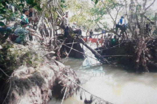 Korban diterkam buaya di Pasaman Barat belum ditemukan