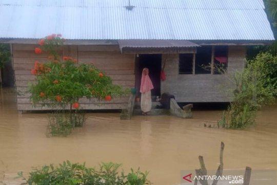509 rumah terendam banjir di pedalaman Aceh Timur