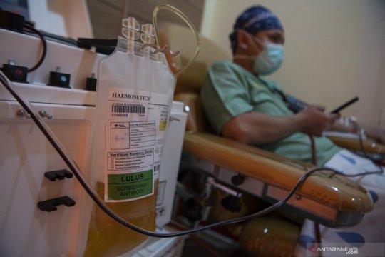 Target donor plasma konvalesen