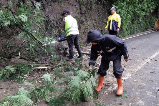 Tanah longsor ganggu akses jalan Kota Batu-Pujon Jatim