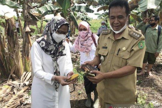 DPTPH Kaltim bantu peralatan Balai Benih Pertanian