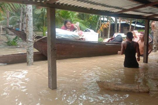 Walhi Aceh minta pemerintah daerah perbaiki tata kelola pembangunan