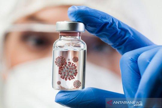 Pemerintah buat langkah cegah penyebaran mutasi virus Corona