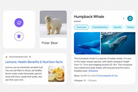 Google desain ulang hasil pencarian di seluler