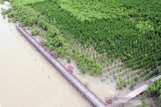 KKP dorong penetapan tiga kawasan konservasi di Kalimantan