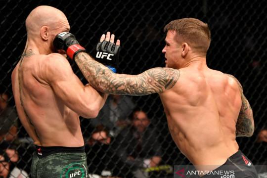 McGregor ingin bikin Poirier pingsan dalam laga jilid 3 UFC