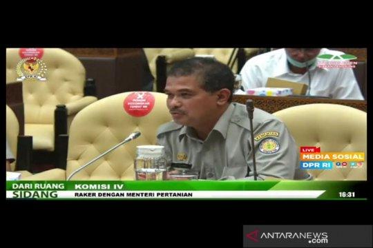 Beras impor rembes, Kementan: 2 perusahaan tengah diproses Bareskrim