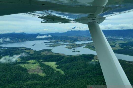 Dishut Papua minta seluruh pihak dukung rehabilitasi hutan dan lahan