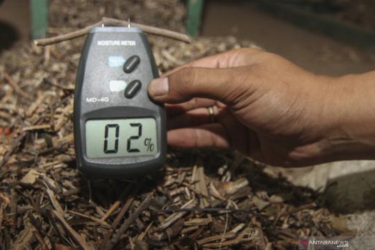 Indonesia gandeng Jepang gali potensi biomassa kayu