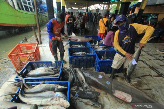 DFW: Target PNBP Perikanan harus lebih realistis