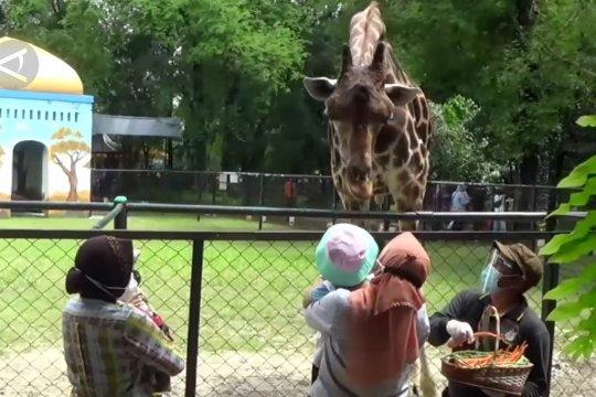 Mensos Risma liburan bersama cucu di Kebun Binatang Surabaya