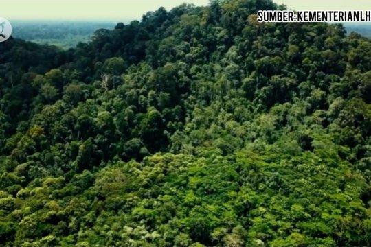 Perlindungan lingkungan hidup bagian dari pemulihan ekonomi nasional