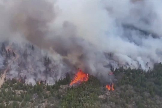 Kebakaran hutan berkecamuk di Argentina selatan