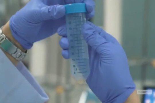 Kembangkan vaksin merah-putih, Bio Farma komitmen ikuti kecepatan luar negeri