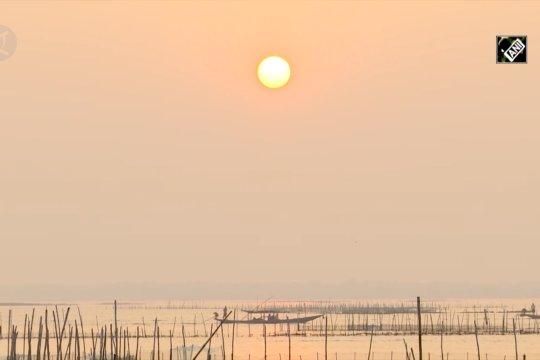Danau Chilika jadi tujuan favorit Lumba-lumba Irrawaddy yang langka