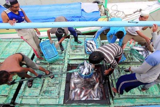 Ekspor perikanan Kalsel meningkat tajam selama pandemi