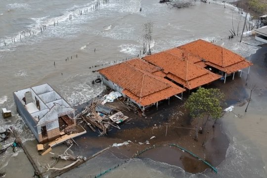 Abrasi di Pantai Wonokerto Pekalongan makin parah, warga buat tanggul darurat