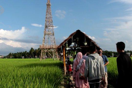 Didanai BUMD, Wisata Sawah Gampong Mane Kareung jadi favorit