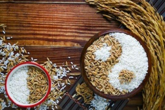 Mengenal beras bambu dan manfaatnya bagi kesehatan
