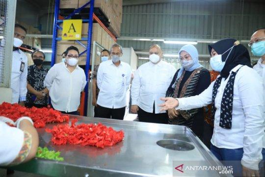Kemnaker kembangkan pelatihan kerja pertanian untuk obat dan kosmetik