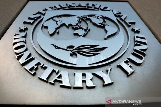 IMF: Ada potensi dan risiko dalam mata uang digital