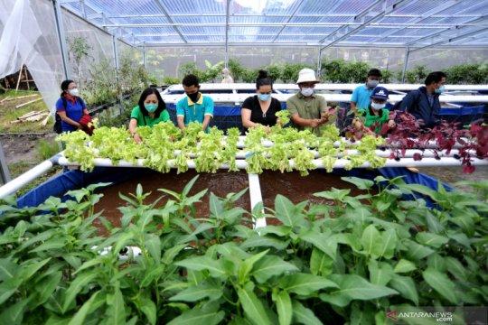 Wisata edukasi Urban Farming
