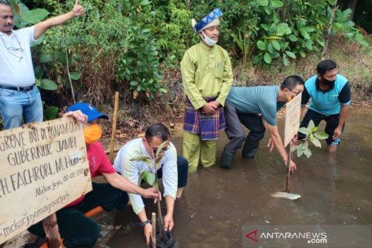Penanaman mangrove perlu evaluasi guna ukur keberhasilan program