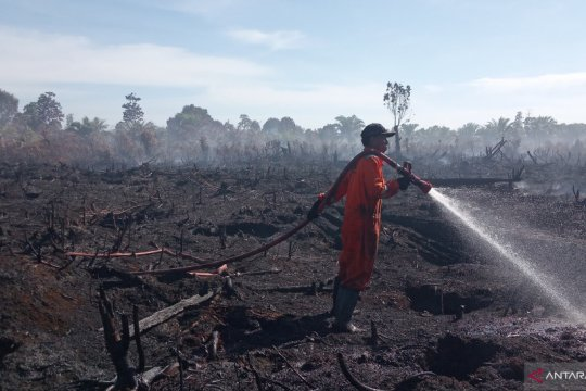 Kebakaran lahan kelapa sawit di Agam-Sumbar meluas jadi 15 hektare