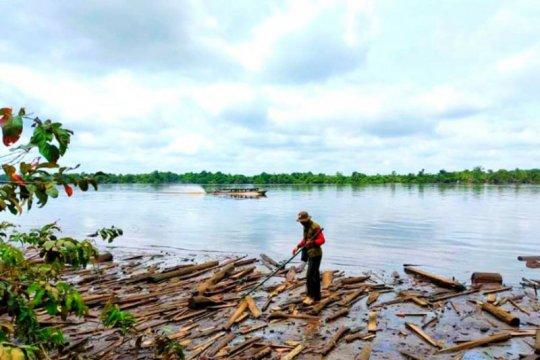 Kemunculan buaya di Sungai Mentaya ditelusuri BKSDA Kalteng