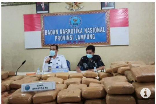 Narapidana Lapas Rajabasa kendalikan pengiriman 248,057 kg ganja