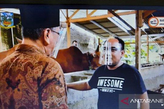Ini tips jadi peternak sapi potong perkotaan ala Azis Gagap